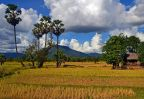 Plateau des Bolovens Laos Amica Travel