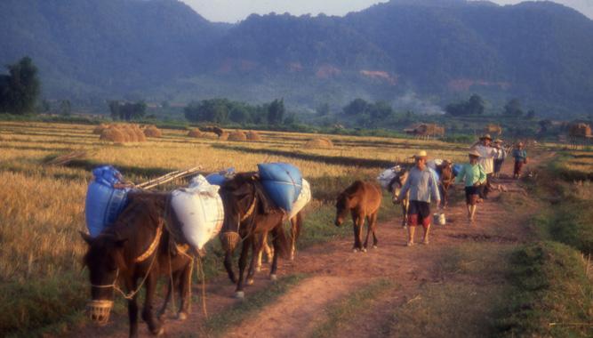 laos papiers a apporter