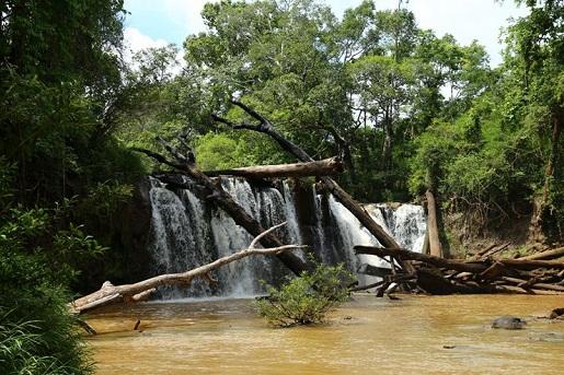 chute-d-eau-jungle-mondolkiri