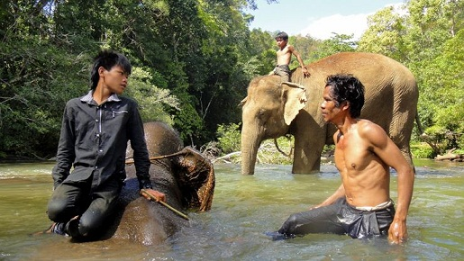 cornac-elephant-mondolkiri