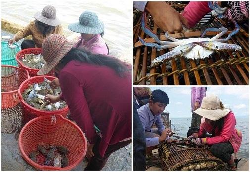 Le marché au crabe
