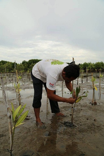 plantation-bokor