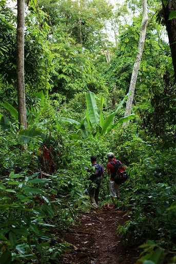 randonnee-jungle-ratanakiri