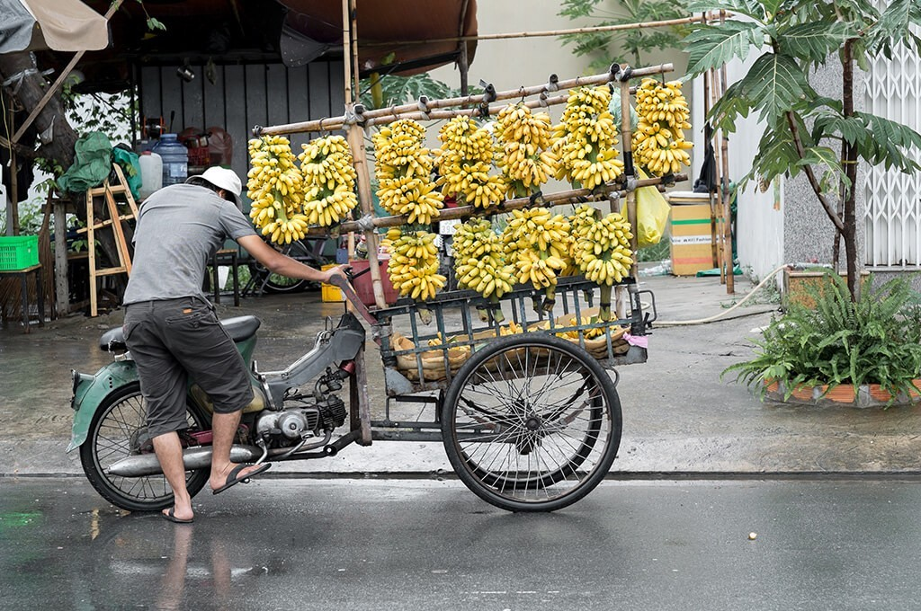 vendeur de fruits delta mekong
